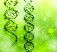 образцы молекулы
